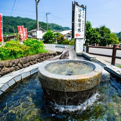 【竹田湧水群】河宇田湧水 ホテルから車で約40分