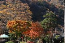 外観 秋、板室の山々の紅葉