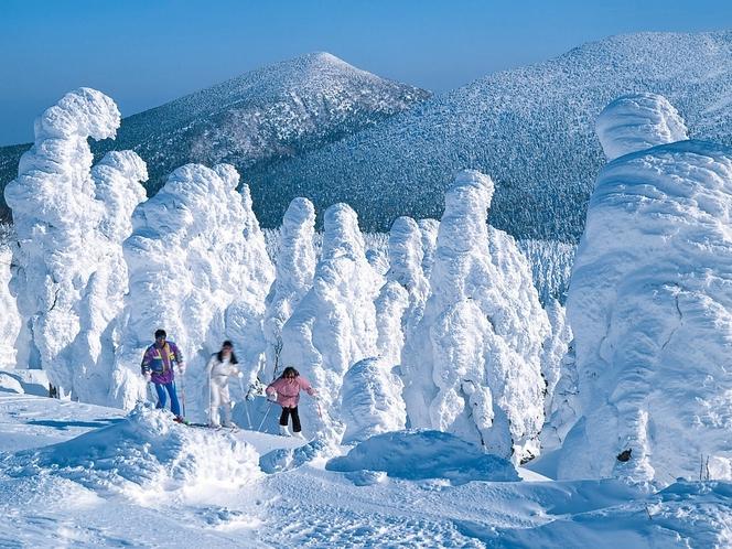 宮城蔵王の樹氷