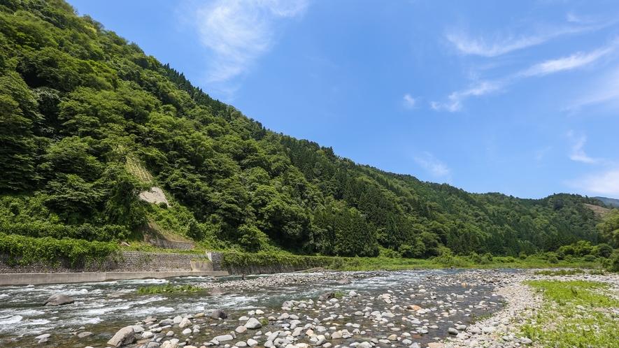 *眼前の長良川の「鮎やな漁場」