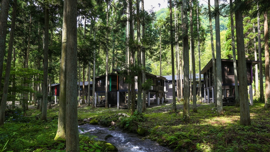 *木々に囲まれ、長良川に面しています。