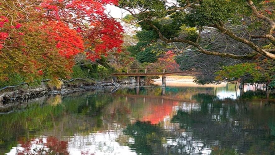 ★川と紅葉★