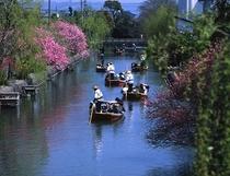 ★川下り(春)★