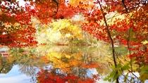 雲場池/当ホテルより車で約4分/秋は湖面を染める美しい秋の朱色と爽やかな空の青が最大の魅力。