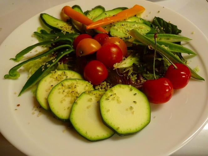 自家菜園で朝採りした新鮮サラダ