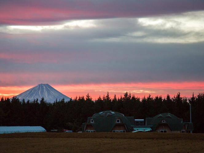 散歩道から一望。朝焼けの霊峰富士。