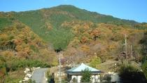*【宿周辺の風景】秋になると木々が美しく色づきます