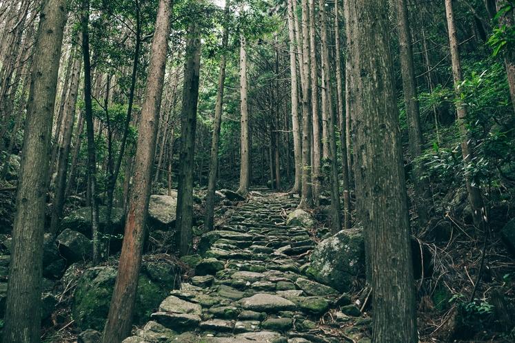 熊野古道 松本峠