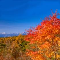 **【清里・美し森から眺める南アルプス】山岳風景と燃える紅葉を贅沢に楽しめる絶景スポット。