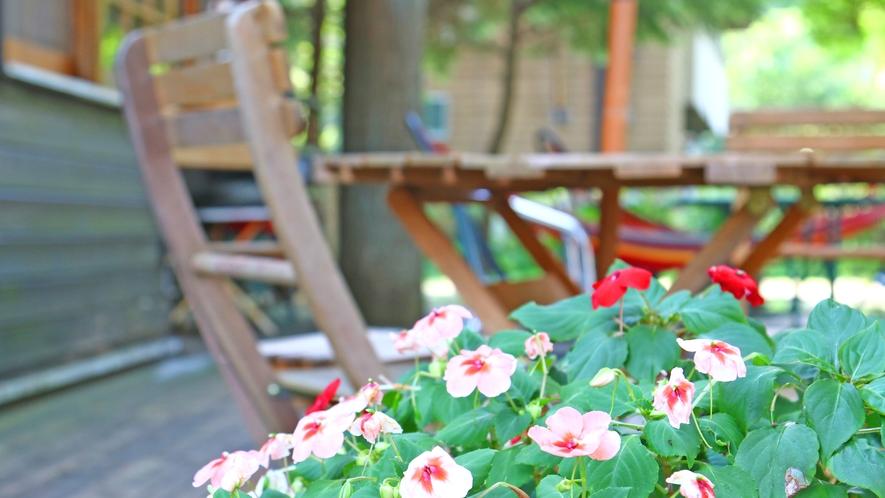◆こすもす◆宿のまわりを彩ります