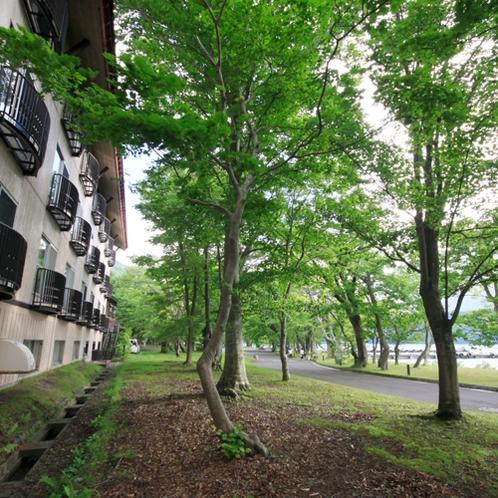 ホテル裏手には、遊歩道を挟んですぐ十和田湖が。