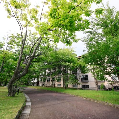 ホテル外観〜ホテル裏手には十和田湖畔遊歩道〜
