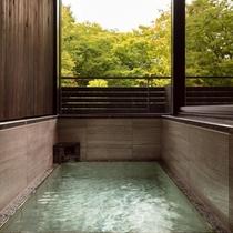 ノースウイング温泉ビューバス付(浴室)