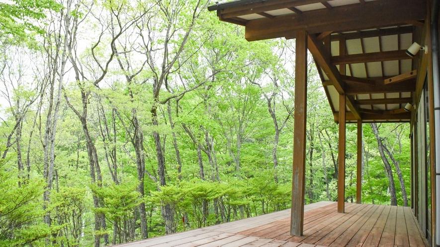 【離れ別館・和室(テラス)】森の中にいるような寛ぎのテラス