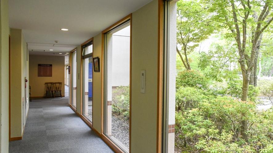 【宿泊棟(廊下)】廊下にも木漏れ日が差し込みます。