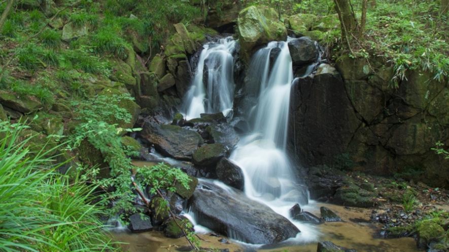【雷滝(塙町)】湯岐渓谷にあり、全体の落差は20mほど。道路脇の遊歩道から眺めることができます。
