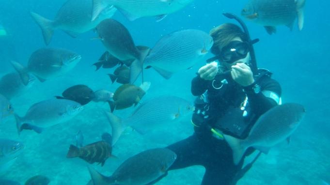 【体験ダイビング】伊豆の海を満喫☆体験ダイビング×ワンプレート朝食≪1泊朝食付≫