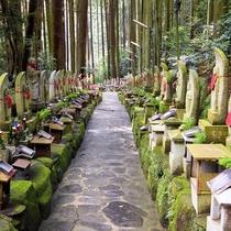 【周辺観光】宝山寺奥の院へ続く参道