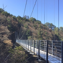【周囲の景色】山の中にある吊橋