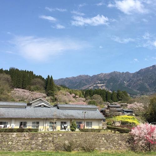 【周囲の景色】昔懐かしい日本の原風景に出合えます