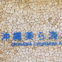 【車で約90分】沖縄を代表する人気スポット「美ら海水族館」【車で約90分】
