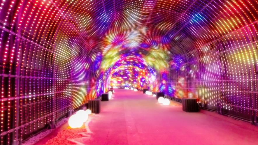 【Nesta Illumina】音と光が織りなす全長約220メートル「Wonder Tunnel」