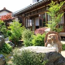当館自慢のお庭