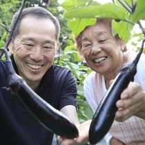 野菜の生産者の新倉さん茄子畑で