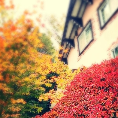【秋冬プラン】 素泊まり  / 最終チェックインは午後10時 *門限午前0時