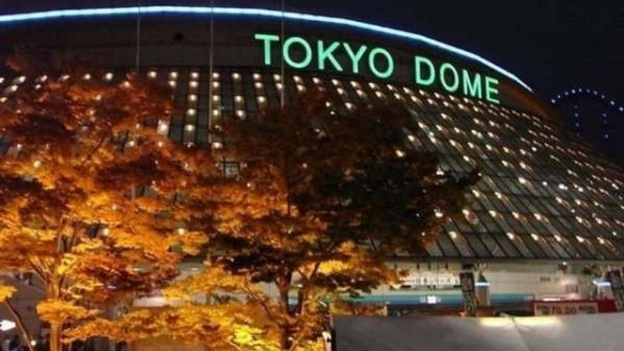 ■東京ドーム