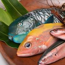 【新鮮なお魚も沖縄旅行の醍醐味】