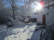 冬の晴れた朝