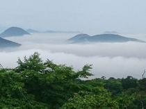 ホテルからの景観(雲海から顔を出す讃岐富士