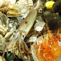 海鮮や野菜など旬の美味しいものが勢揃い!!