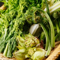 *アクの少ない山菜は豪雪地帯ならでは。毎年春が来るのを心待ちにしています。
