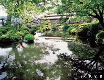 夏の仙巌園