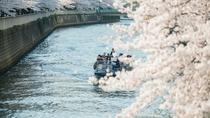 目黒川 お花見クルーズ