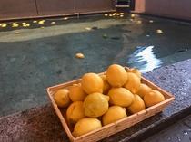 レモン風呂開催 12月4日