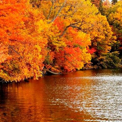 【シーズン最後の還元】ありがとうの気持ちを込めて♪秋の大感謝プラン 素泊まり