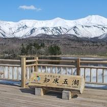 周辺観光(知床五湖)
