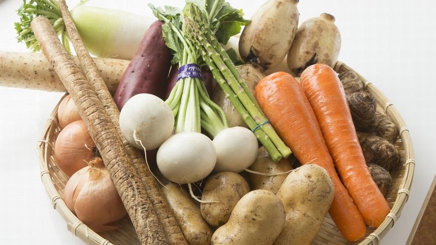 根菜にはカラダを温める効果が期待できます♪
