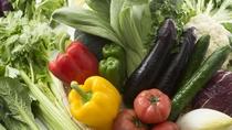 健康と美容に配慮し、新鮮な野菜をふんだんに使用したバイキング