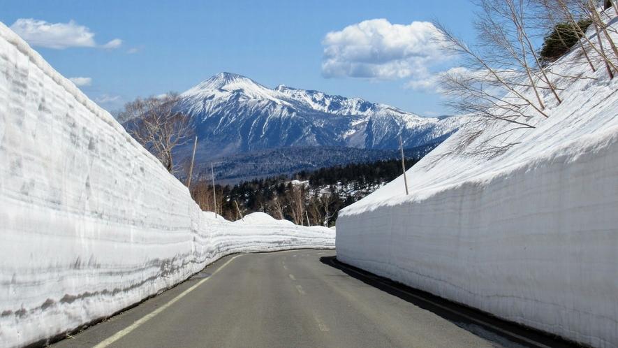 【八幡平】アスピーテライン 雪の回廊