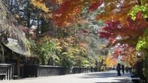 【角館武家屋敷通り:秋】紅葉シーズン