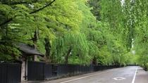 【角館武家屋敷通り:初夏】新緑シーズン