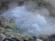【玉川温泉自然研究路】源泉 大噴(おおぶき)1分間で約98℃の源泉が9000リットル噴出しています
