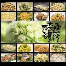 ◎【自然彩食ふきのとう】旬の野菜をたっぷり使った自然食バイキング