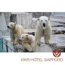 円山動物園イメージ