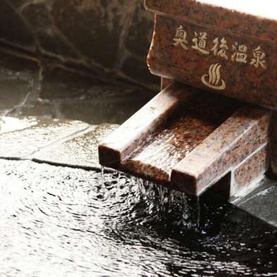 【お部屋はおまかせ】奥道後温泉大浴場でゆったりステイ◇お得な素泊りプラン◇