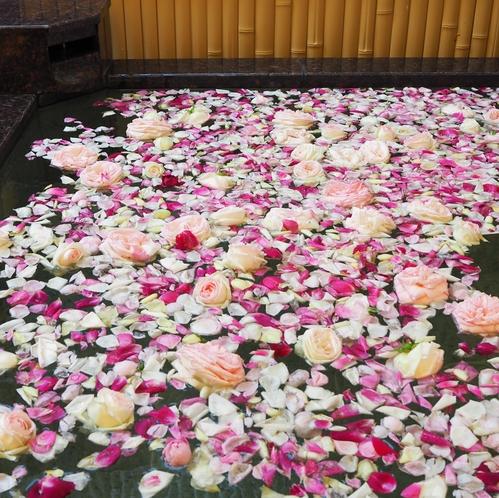 露天 薔薇風呂(5月)